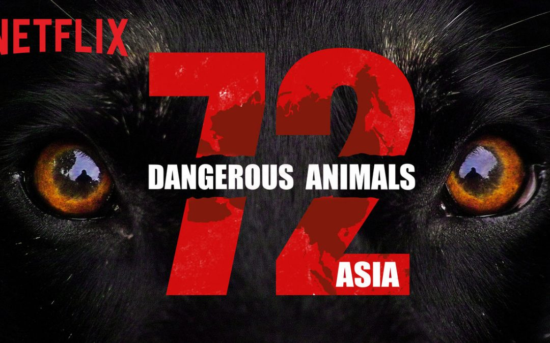 72 Dangerous Animals ASIA